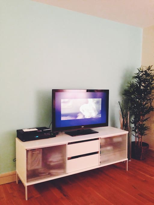 Flat screen TV + premium cable + Apple TV + DVD player + wifi.