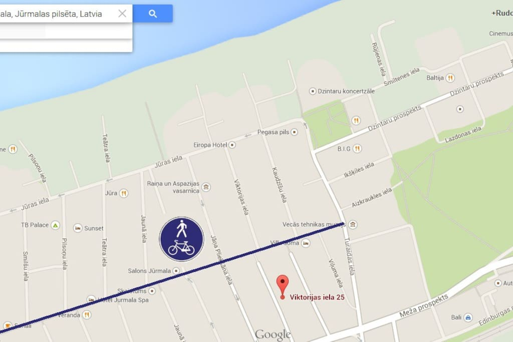 Location of the house. Blue line indicate the popular pedestrian street with dining and shopping