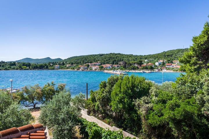 One bedroom apartment near beach Ždrelac, Pašman (A-12662-a)