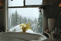 Your view from your soaker tub. Don't worry...no one can see you when you're in the tub...I hope anyway!