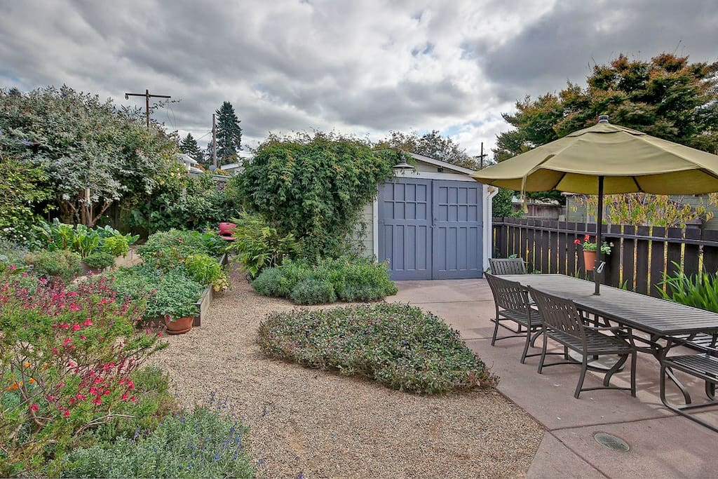 Sunny backyard with beautiful landscaping, raised beds,herbs to cook with, lemon tree and seating area.