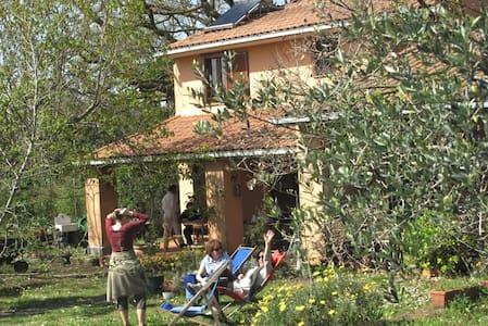 Villino vista lago di Bracciano - Trevignano Romano - Hus