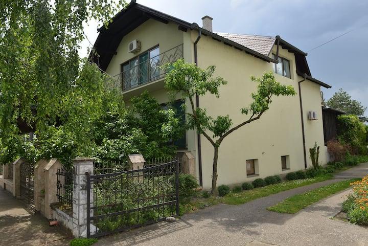 Apatin, Kuća u vrtu