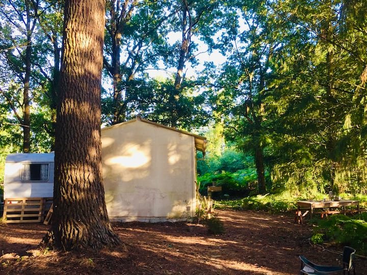 Un petit Oasis en Forêt // Cabanon & Caravane