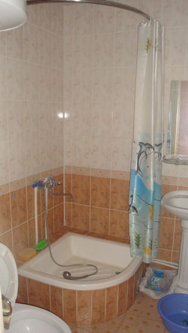combined shower and toilet