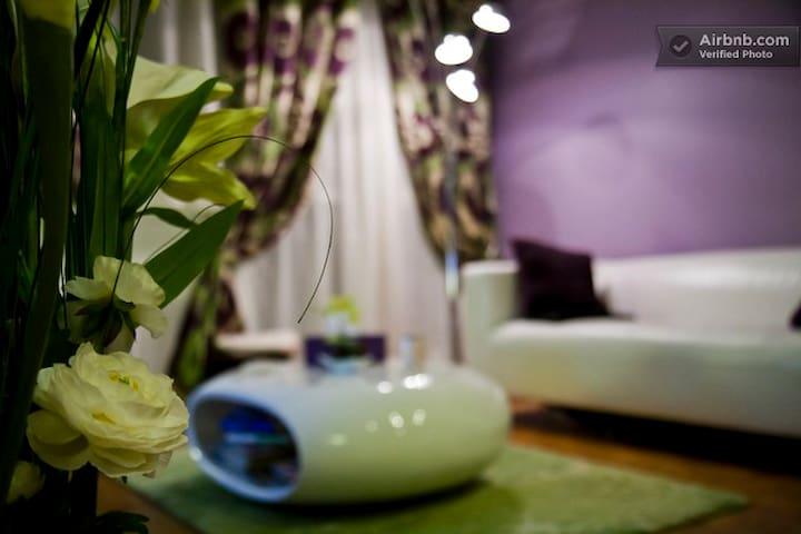 Comfortable and spacious apartment  - Livry-Gargan - Leilighet