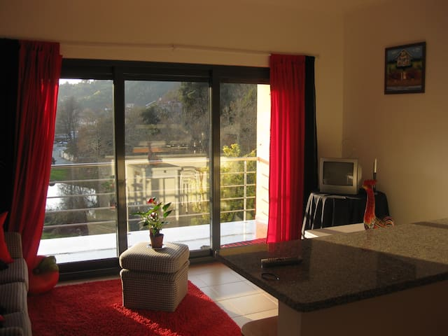 Best View Apartment in Thermal town - São Pedro do Sul - Huoneisto