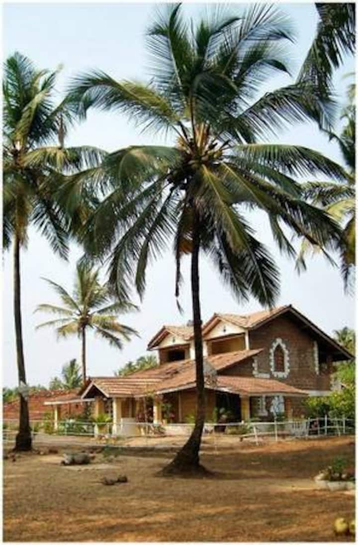 The Beach House, Mandrem beach