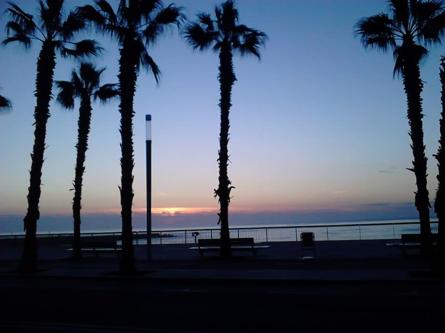 Playa Barceloneta