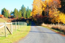 While you are outside, you may want to go for a walk. This is part of our neighborhood.