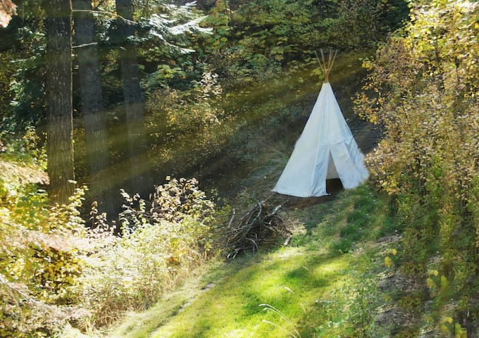 Our backyard also has a tipi for the kids...or adults who want to act like kids.