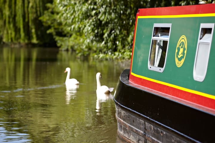 Stay On a Narrowboat  - Worcester - Bot