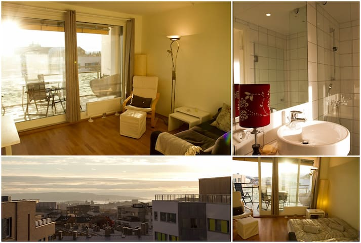 High standard, private bathroom, balcony and view! - Oslo - Bed & Breakfast