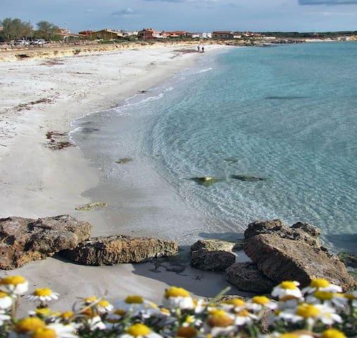 Sardegna, casa su spiaggia meravigliosa