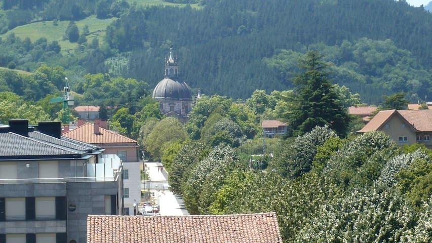 Vista de la Basílica desde casa.