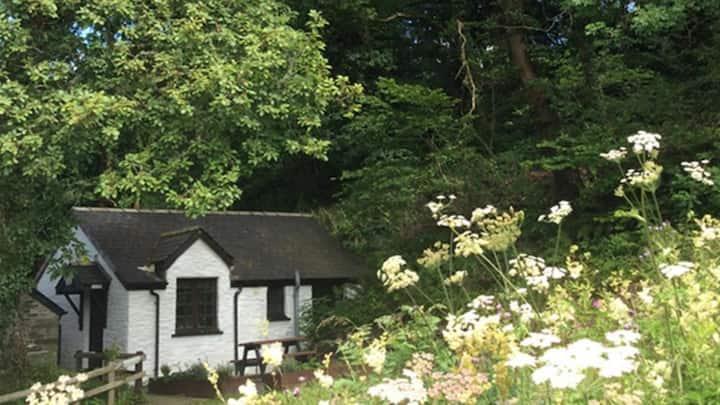Unique & Peaceful Cottage at Welsh Wildlife Centre
