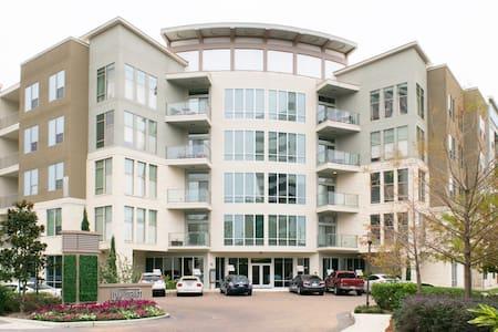 Luxury Apt in River Oaks/Galleria - Houston