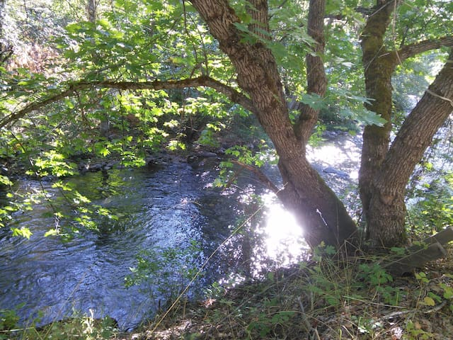 Private Creekside RV in Klamath National Forest