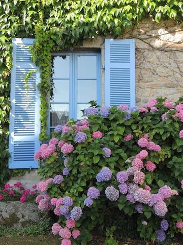 Une Chambre en Bretagne - Collinée - Bed & Breakfast