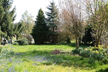 This is our garden which you also could use