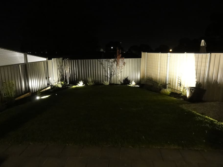 Backyard garden at night