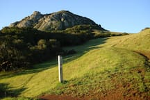View along trail...Bishop's Peak! You will be smiling at this point.