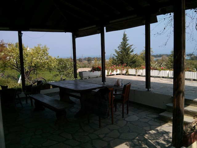 Charming studio with the most stunning view! - Πευκοχώρι - Hus
