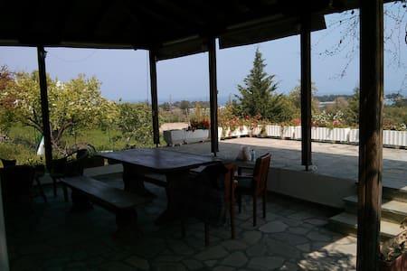 Charming studio with the most stunning view! - Πευκοχώρι - 独立屋