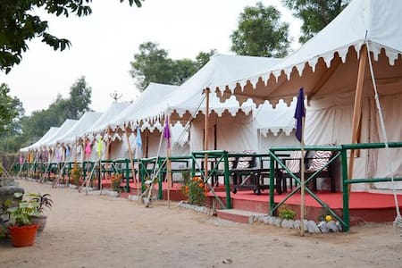 BAGH DERA CAMP & JUNGLE RESORT