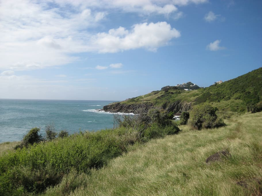 Hike to the Natural pool & Guana bay