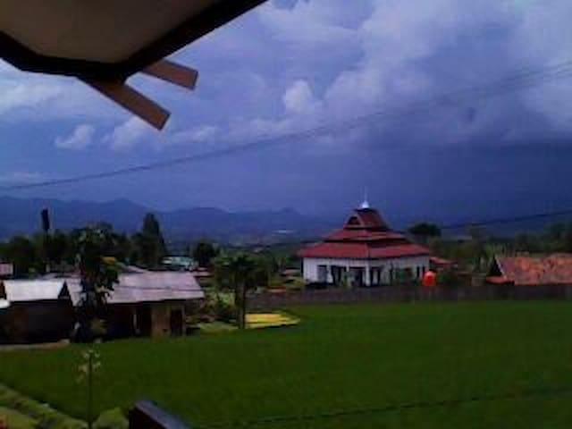 BUKIT GUNUNG PUNTANG, BOUGENVILE - Bandung