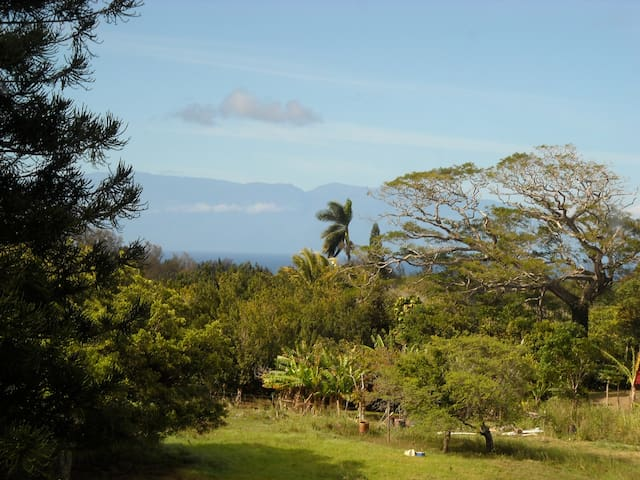 Sundeck Suite Kohala Country Haven Big Isle Hawaii - Kapaau - Leilighet