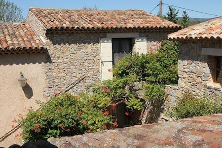 Holydays stay in restored knight-templar farm - Carcès - Huoneisto