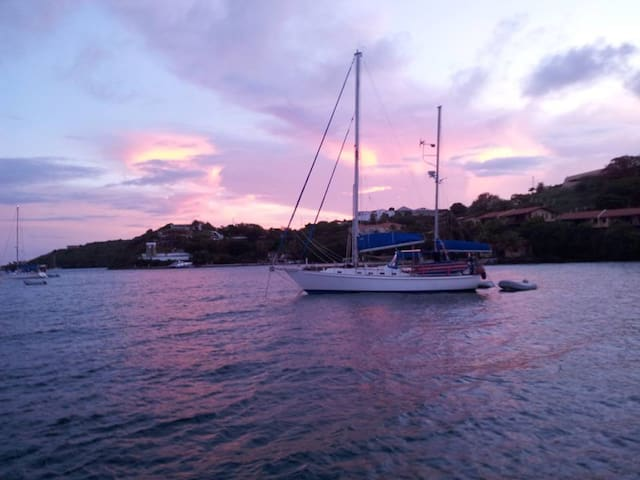 Sailing Vessel Lunacy, 42 ft ,BVI - Road Town - Boot