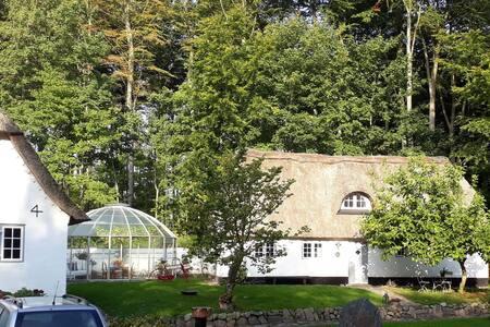 Skovhusets annex