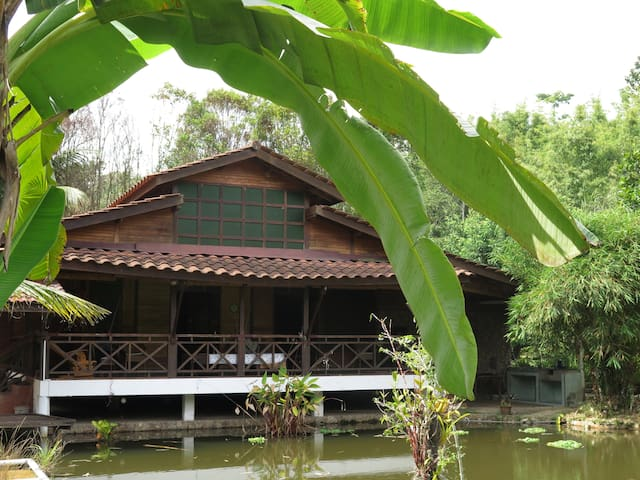 Maplewood Guest House - Bentong - Guesthouse