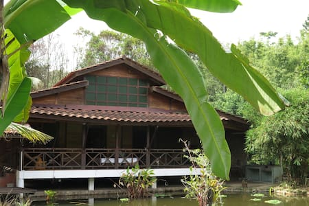 Maplewood Guest House - Bentong - Pension