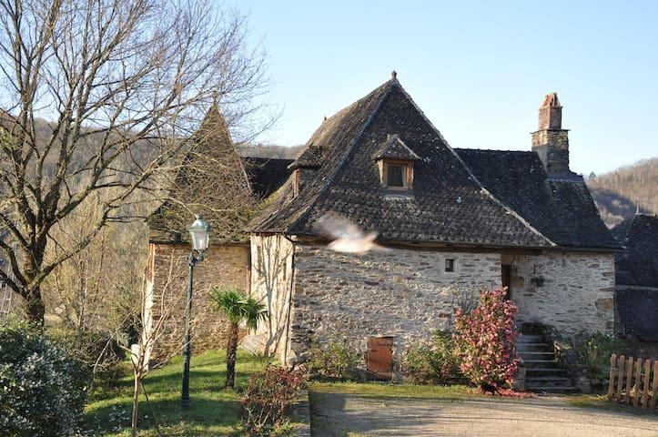 Charme dans la vallée de la Dordogne - Laval-de-Cère