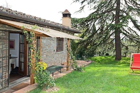 Farm House in Chianti Fonticina #2 - Leilighet