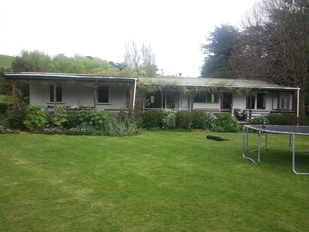 Motuotaraia Cottage, with lovely gardens.