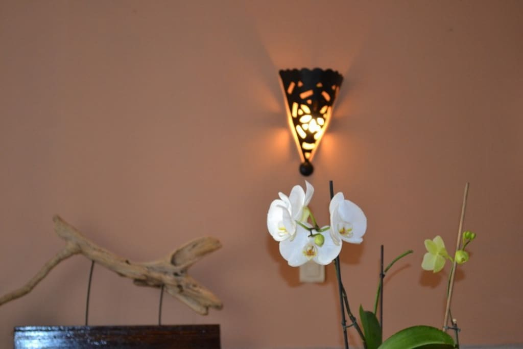 Detail,orchid, living room
