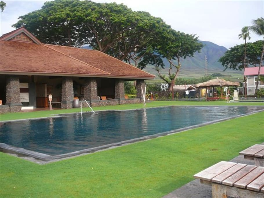 Lovely apt aina nalu lahaina i109 appartements louer for Club piscine chlore