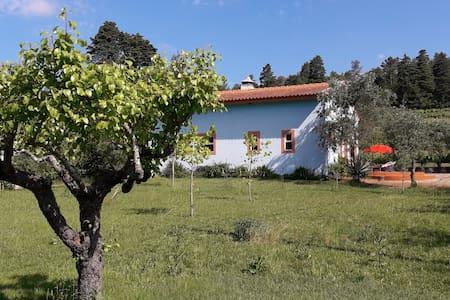 Casa Merlot op rustieke wijnboerderij