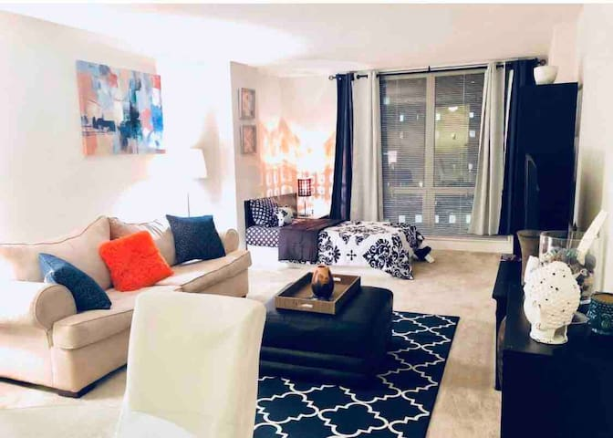 *** BEAUTIFUL 1BR in Downtown SILVER SPRING ***