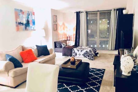 BEAUTIFUL 1BR in Downtown SILVER SPRING