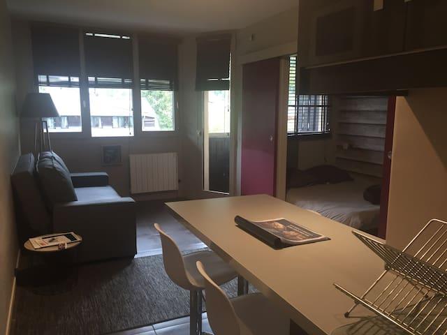 Vue du salon depuis la cuisine ( la chambre est séparée du salon par des portes coulissantes)