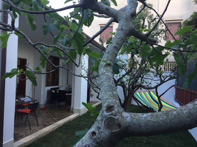Cozy villa with private garden