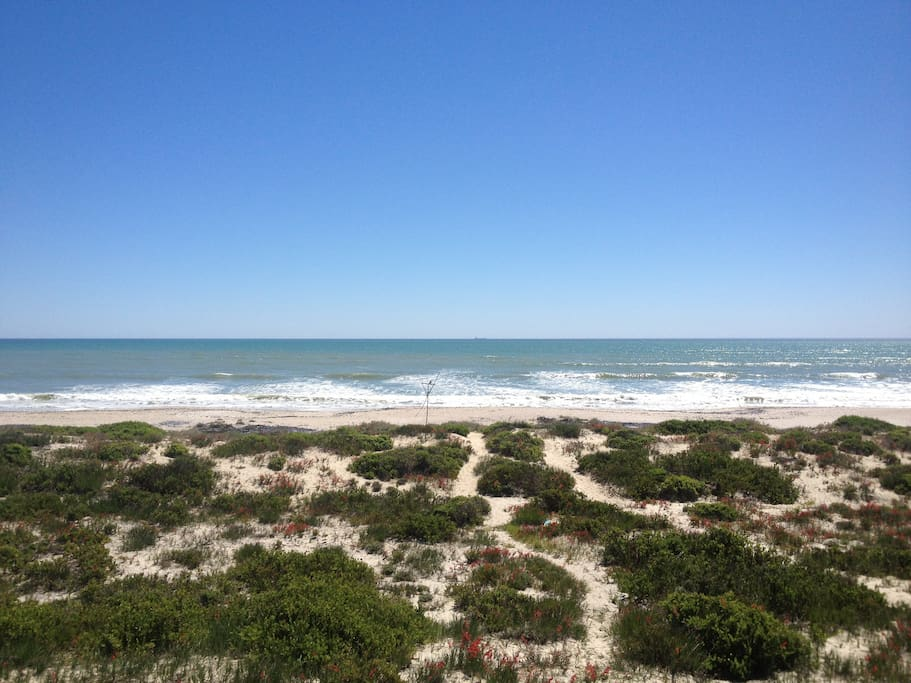 Beach directly in front of the house. Perfect for those long stretches and beach walks.