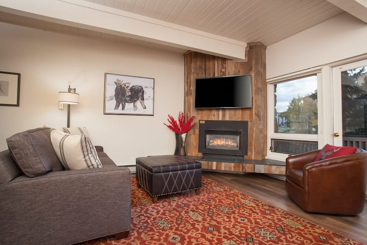 Adorable remodeled studio w/ modern decor, fireplace & hike & bike trails nearby