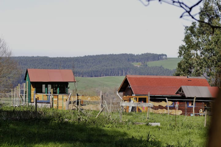 wooden house in Güemes/Cantabria - Cantabria - Cabin